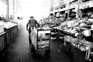 Viseu, Mercado Municipal, 2009
