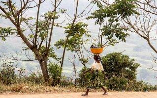 Mbanza Congo, 2017